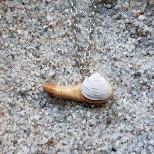 Geoduck Clam Necklace