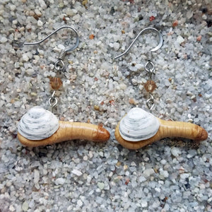Geoduck Clam Earrings