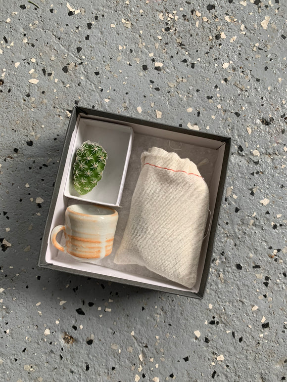 Mini Cactus Kit Mug Collaboration Gift Set