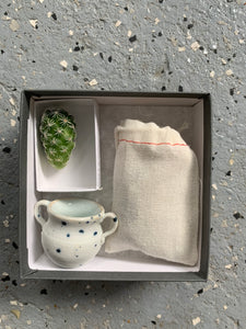 Mini Cactus Kit Double Handled Vase Collaboration Gift Set