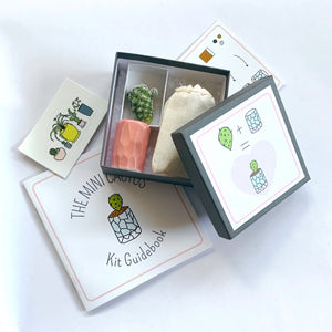 Mini Cactus Kit Gift Set