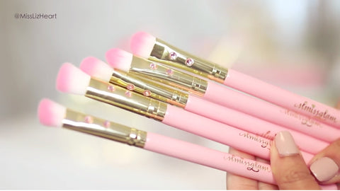 pink glam brush book- glam brushes