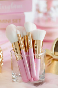 Pink Mini Brush Set💕