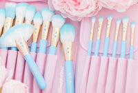 Baby Blue Glam Brush Book💕