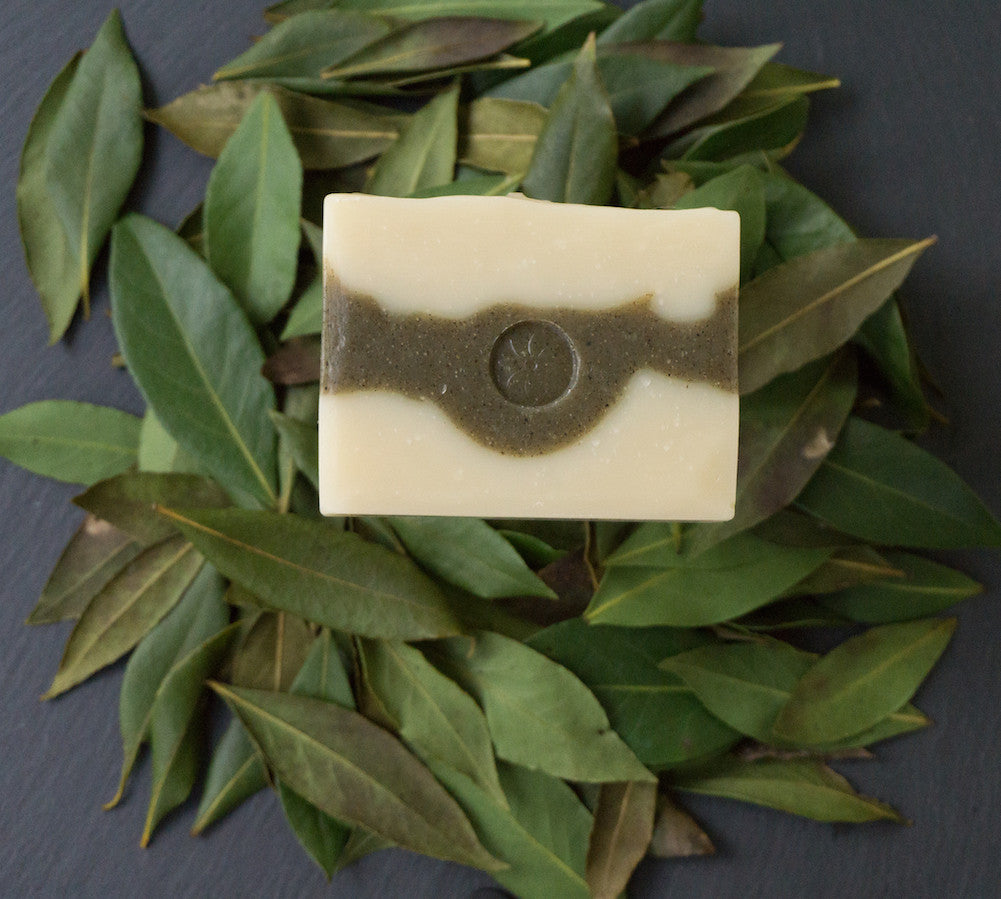 Spruce & Fir Soap Bar Unwrapped on a pile of Laurel leaves