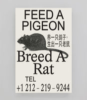 FE Poster: Souvenir 167 - Feed A Pigeon, Breed A Rat