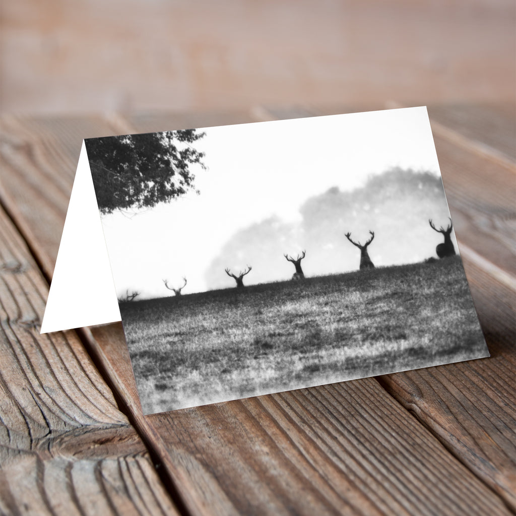 Greeting Card - Ascent of Stag