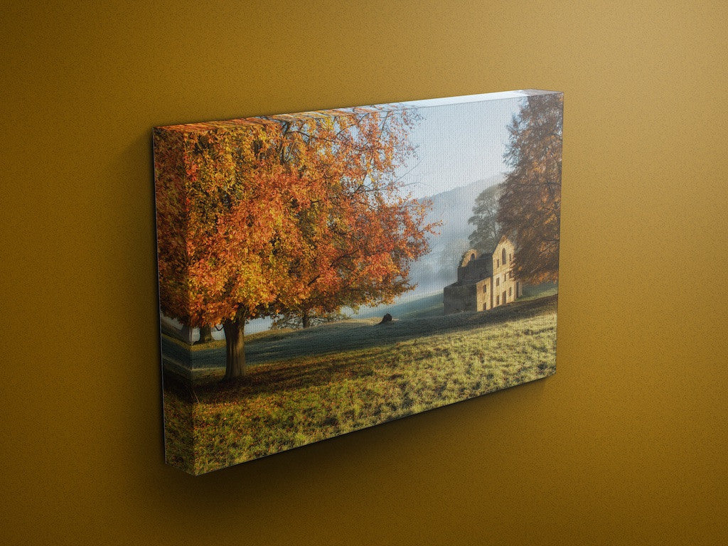 Autumn Gold Chatsworth Canvas