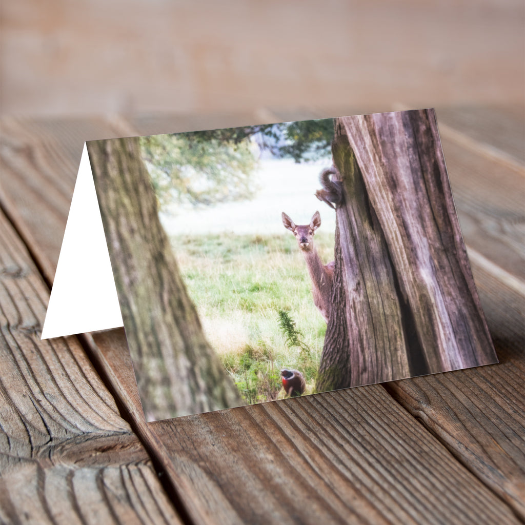 Greeting Card - Bambi's Friends