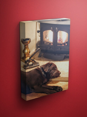 Barnaby and The Roasting Fire Labrador Canvas
