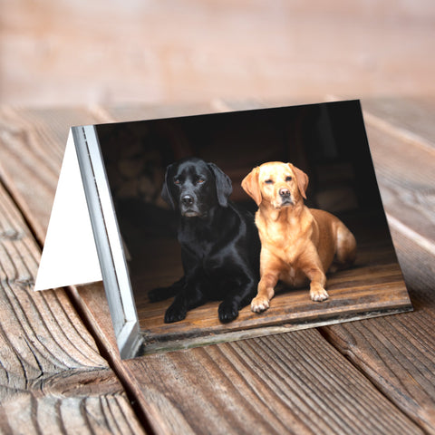 Greeting Card - Black and Tan