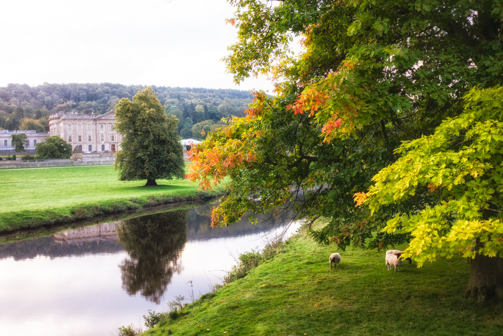 Chatsworth Autumn -  Landscape Print