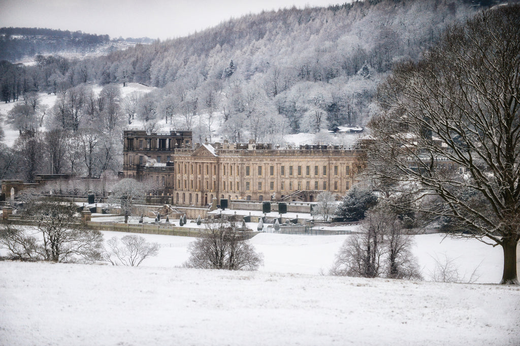 Chatsworth Christmas Snow Print