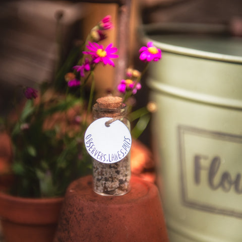 What3Words Personalised Wildflower Meadow In A Jar