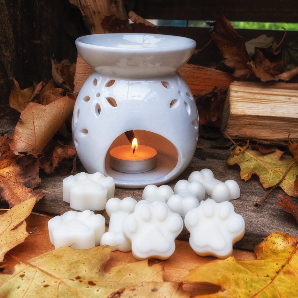 Essential Oil Burner and Melts - Sandalwood & Cracked Black Pepper - Country Chicks