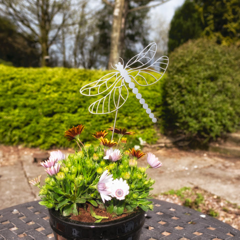 Flying Dragonfly - Rustic Rusted Garden Wildlife Sculpture - Solid Steel