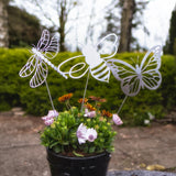 Flying Bee, Butterfly & Dragonfly Trio Set - Rustic Rusted Garden Wildlife Sculpture - Solid Steel