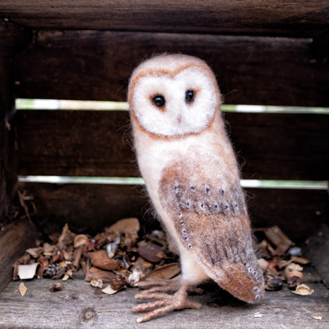 Barnadette Barn Owl Needle Felting Kit
