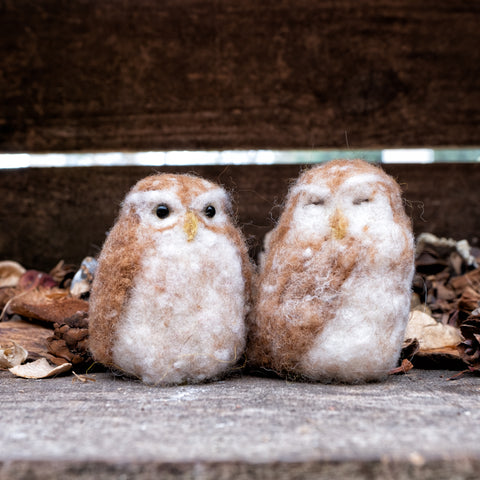 Ollie and Lucy Little Owls Needle Felting Kit