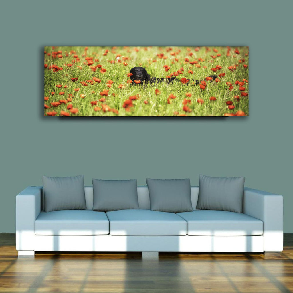 Dilly and the Field of Poppies - 1.2m x 50cm