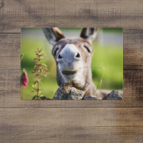 Donkey Smile - Glass Worktop Saver