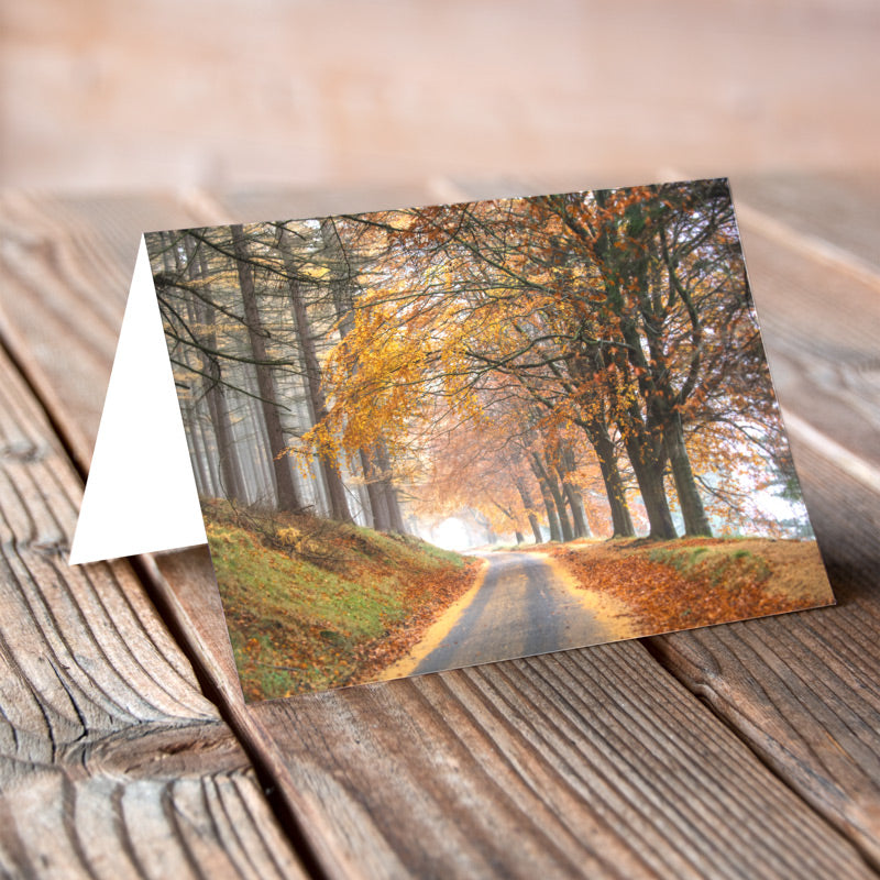 Greeting Card - Howden Autumn