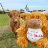 Highland Cow - Personalised Wildlife Cuddlies