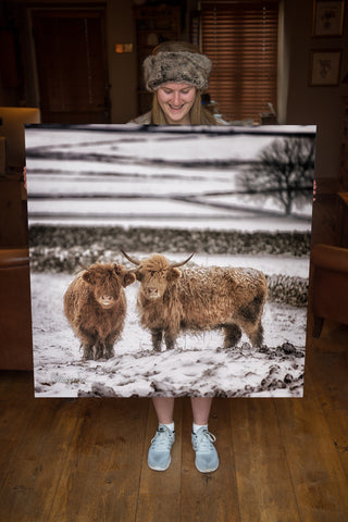 JUMBO ART - GINGERBREAD and ICING  - HUGE 1 Metre Square Canvas