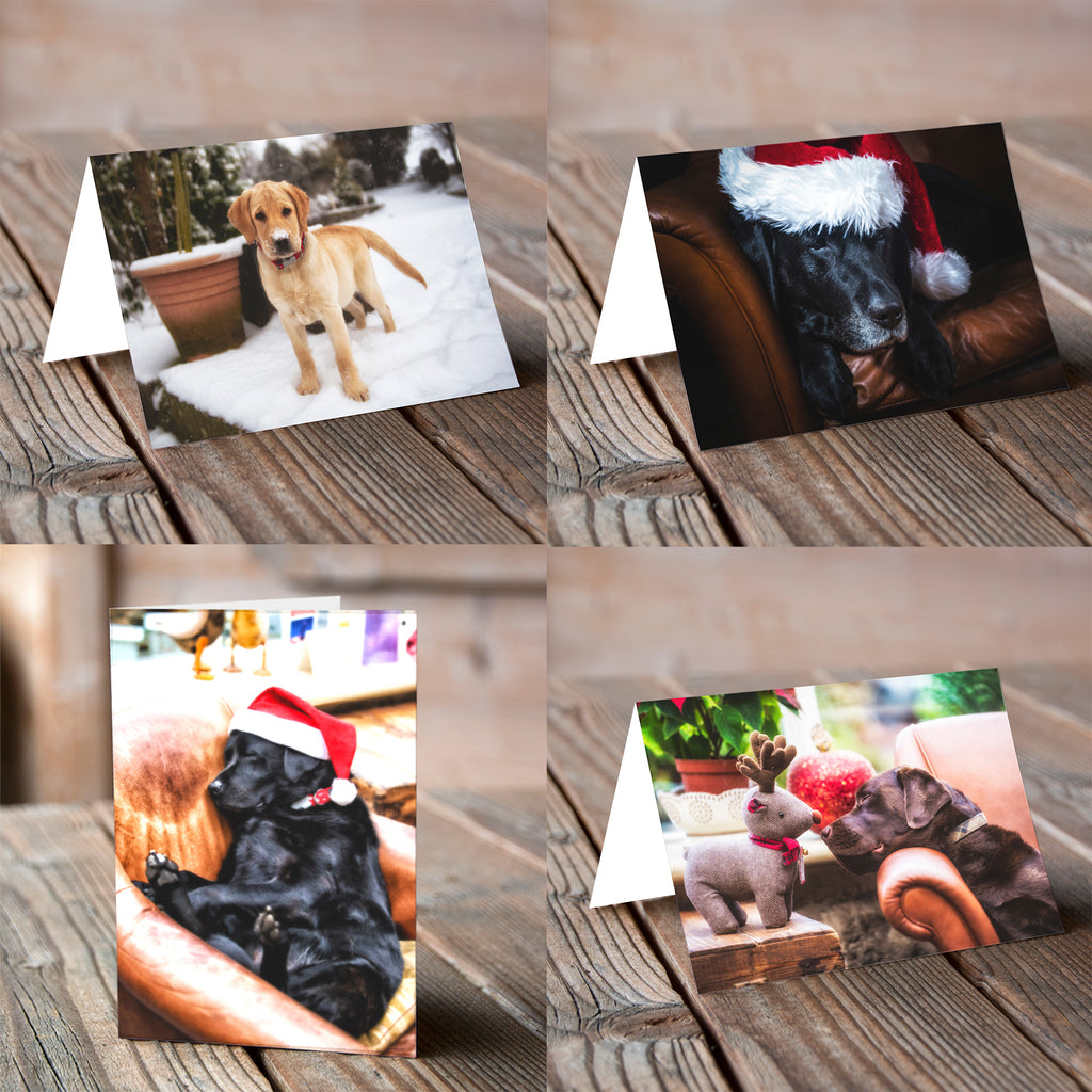 Mixed Pack Labradorable - Christmas Card