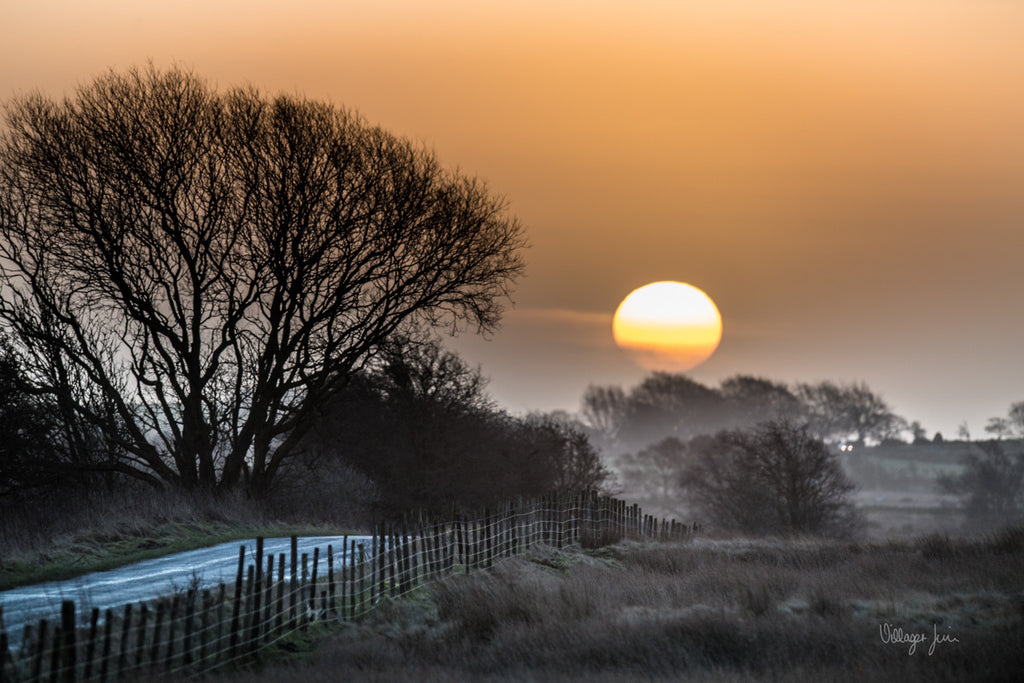 Moorland Sunrise  - SIGNATURE COLLECTION