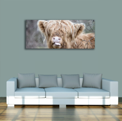 PANORAMIC - RASPBERRY COW - 1.2m x 50cm