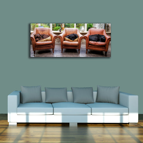PANORAMIC - SORRY NO SEATING FOR ADULTS - 1.2m x 50cm