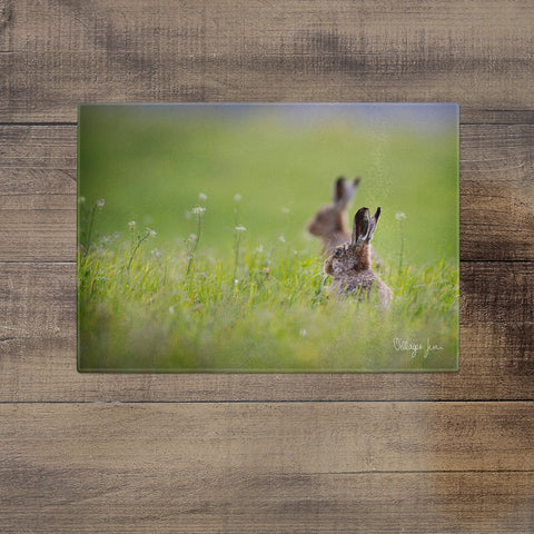 Summer Hares- Glass Worktop Saver