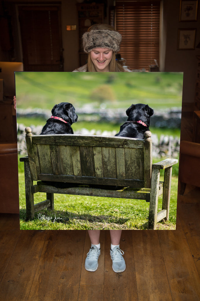 JUMBO ART - TWO FAT LADIES - HUGE 1 Metre Square Canvas