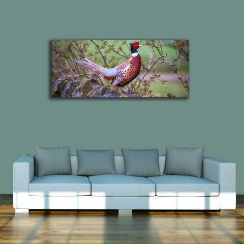 PANORAMIC - The Perfect Pheasant - 1.2m x 50cm