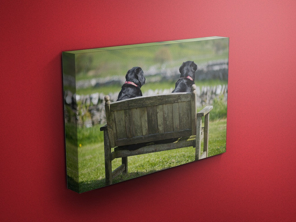 Two Fat Ladies Labrador Canvas