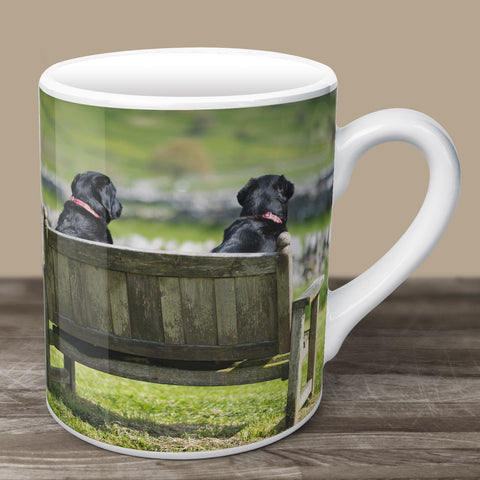 Two Fat Ladies Mug