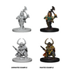 Dungeons & Dragons Nolzur's Marvelous Miniatures - Dwarf Female Barbarian