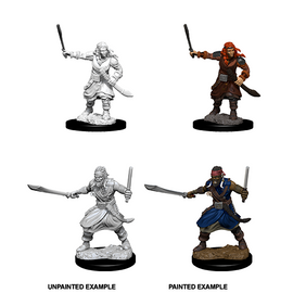 Dungeons & Dragons Nolzur's Marvelous Miniatures - Bandits