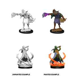 Dungeons & Dragons Nolzur's Marvelous Miniatures - Arcanaloth and Ultroloth