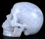 Blue Calcite Natural Crystal Skull 5""