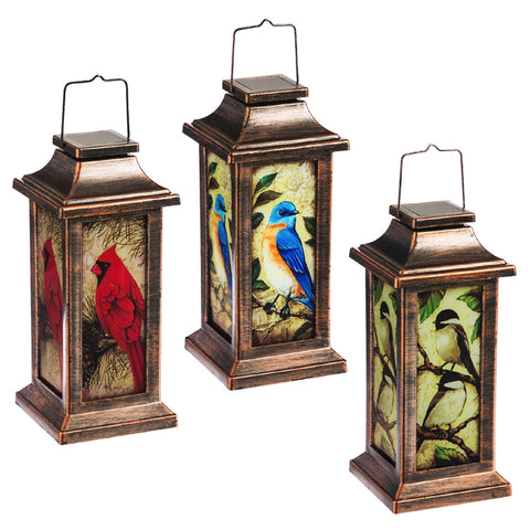 Winter Bird Solar Lantern, 3 Styles to choose from