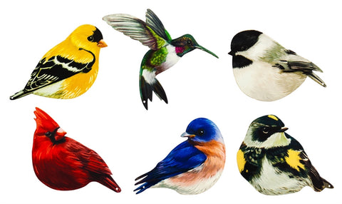 Realistic Bird Screen Door Savers, 6 Asst. Designs