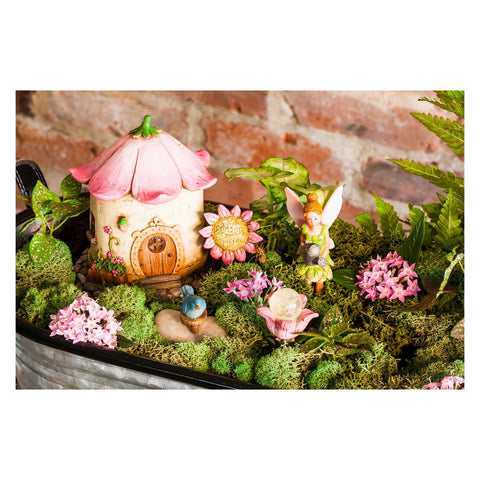 Blossom Boulevard Mini Garden Set of 5