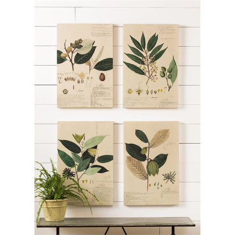 Fabric and Wood Plant Artwork, Set of 4