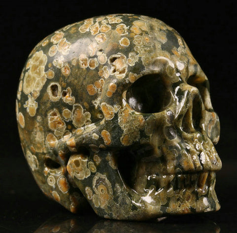 Rain Forest Jasper natural crystal skull