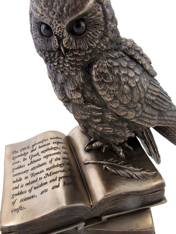 Owl on Book Figurine