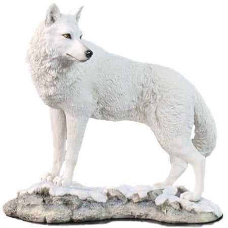 White Wolf Looking Back Statue 9.5 Inch
