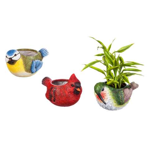 Portly Bird Planter, 3 Assorted Birds