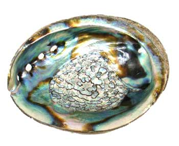 Abalone Shell smudging and crystals